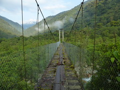 Bridges of Ecuador
