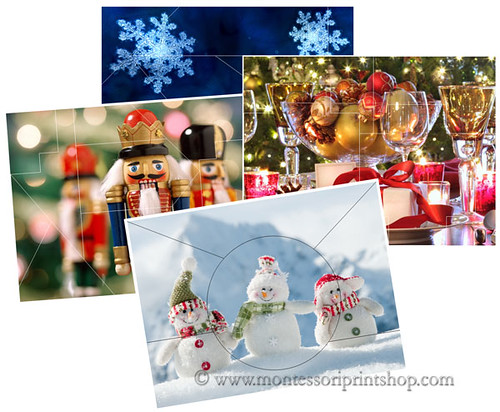 Free Winter Puzzles (Image from Montessori Print Shop)