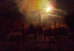 fire and smog over my wine yard