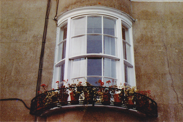 windowsill flower pots