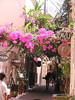 Kreta 2003 051