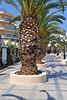 Kreta 2009-1 120