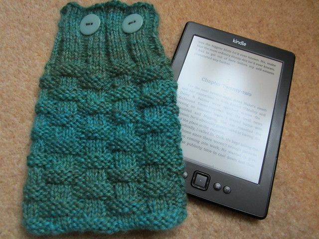 Kindle cosy (1)
