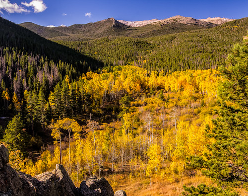 Colorado autumn oversight-1