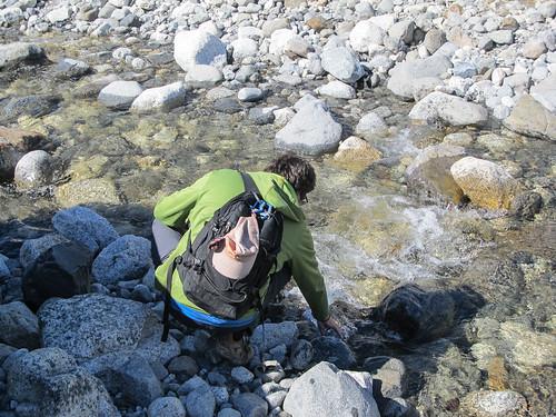 Trek de la Laguna de los Tres: l'eau vient directement des glaciers; elle est donc transparente et potable.