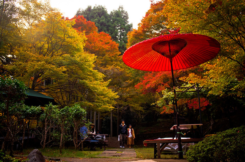 momiji '12 - autumn leaves #15 (near Jingo-ji temple, Kyoto)