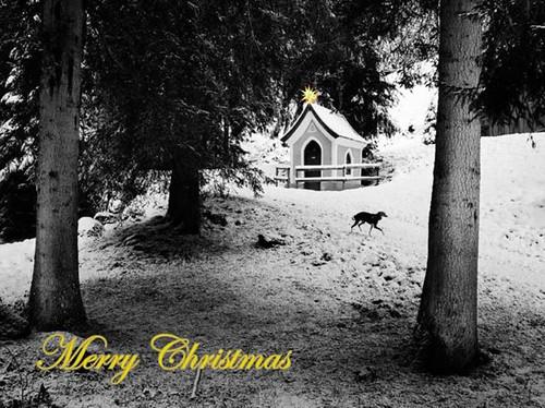 Weihnachten 2012Lilou