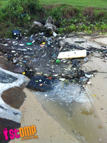 Is this really Singapore? Pasir Ris shoreline covered with rubbish