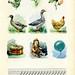 illustrazione libro - Книжная иллюстрация - 6 by sonobugiardo