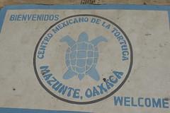 Centro Mexicano de la Tortuga