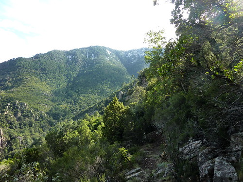 Les crêtes enneigées vers Luviu et le Valdu Grande depuis le point extrême atteint le 30/10/2012