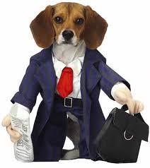 barcenas en perro