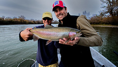 Lower Sacramento River fly fishing guide Anthony Carruesco poses a trophy Lower Sacramento River Rainbow