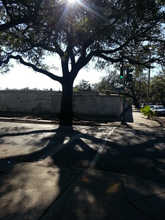 Wall of Lafayette #3