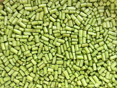 beans pattern abstract green