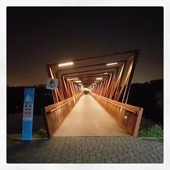 Halus Bridge, connecting Punggol to Pasir Ris...