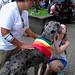 El perro y la muchacha/The dog and the girl
