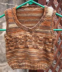 Parker's Owl Vest