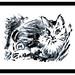 Monotipia - Gato by -murilo-