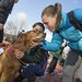 20121208_mac_dogdays_201