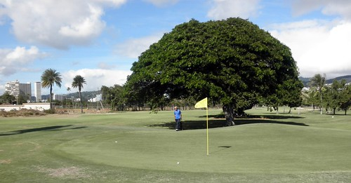 Ala Wai Golf Course 057b