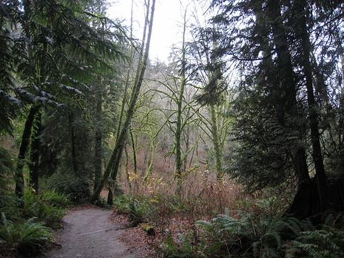 Meadowdale Park - Lynnwood