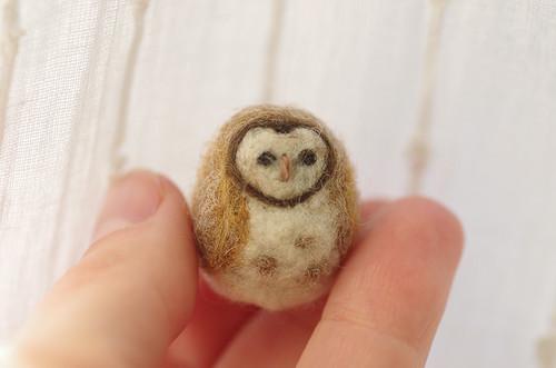 owl tiny