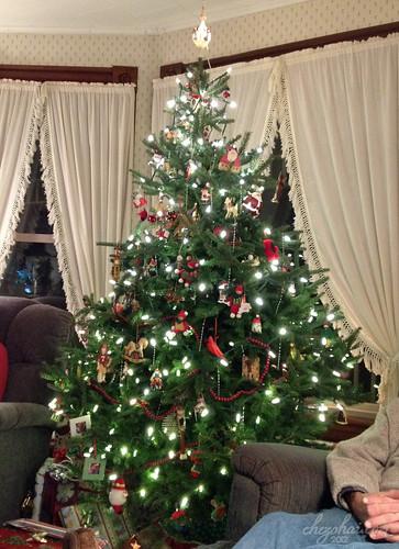 Sawyer Tree