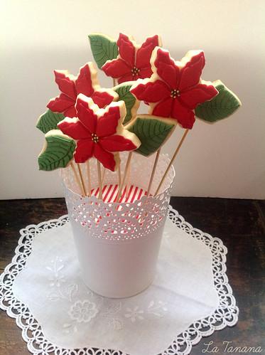 Flor de Navidad 6