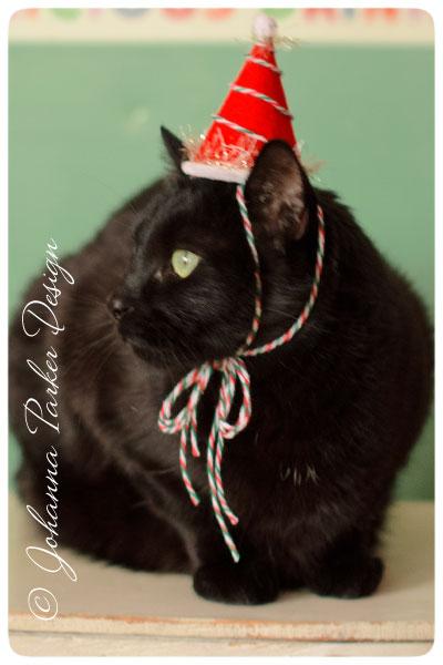 Jack-looks-for-Santa