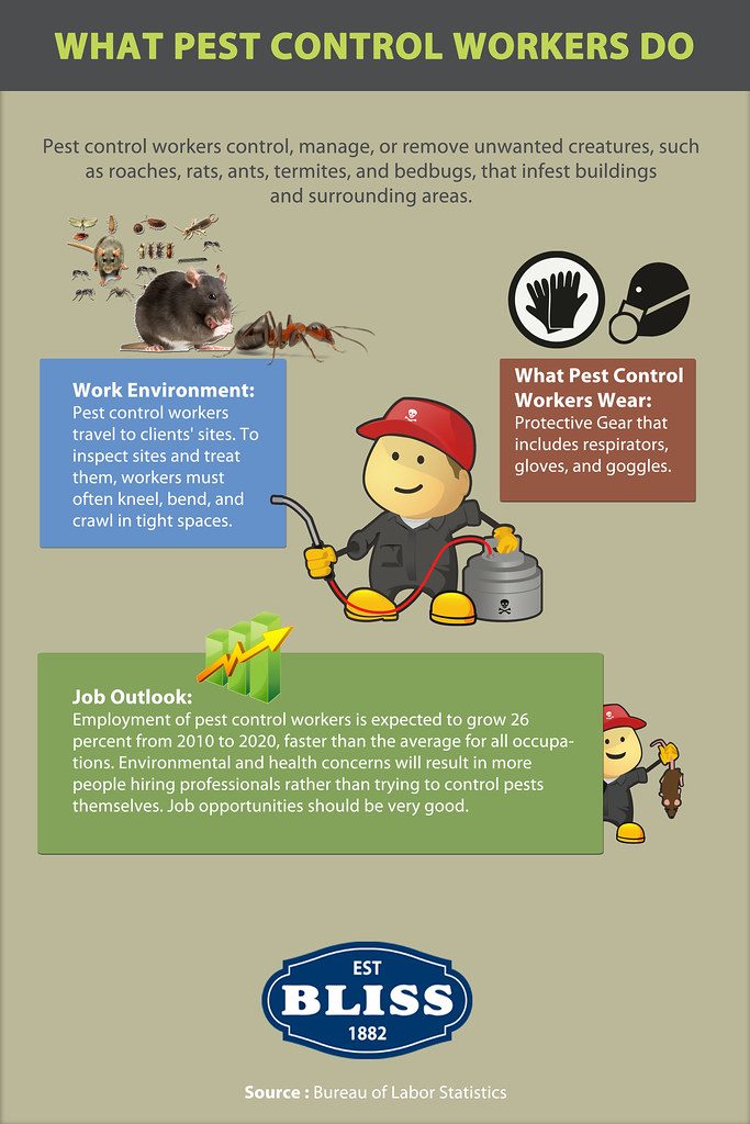 What Pest Control Workers Do - Infographic