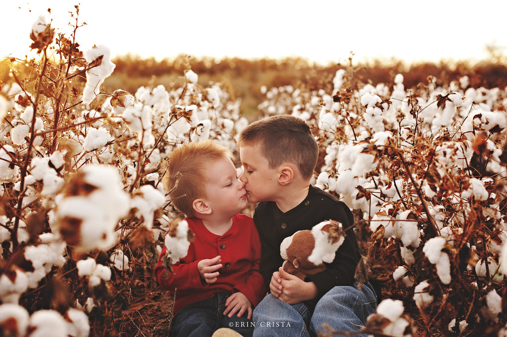 Cotton Field Kiss