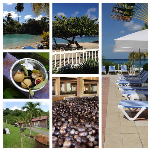 Resor 2012: Grenada