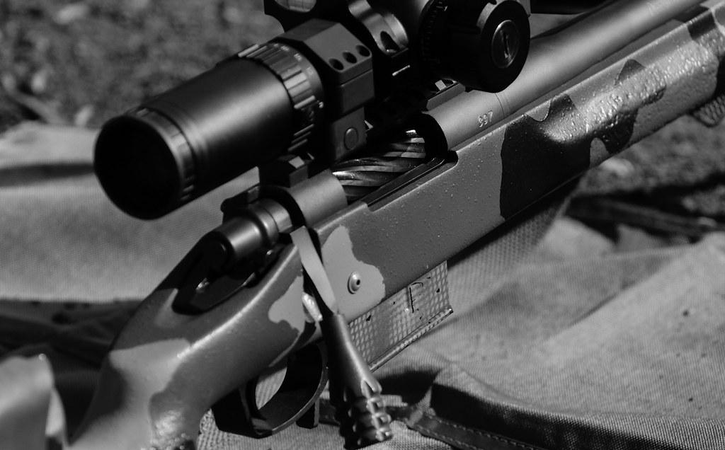 reddit-top-2 5-million/Gunsforsale csv at master · umbrae