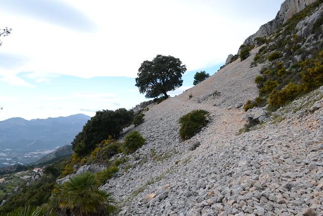 917 Pedregal Sierra de Bernia PR CV 7