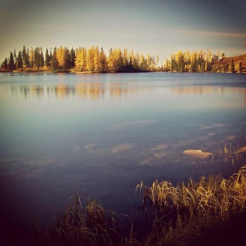uploaded:by=flickstagram instagram:photo=1761050403413902592143347