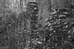 Sope Creek Mill Ruins II