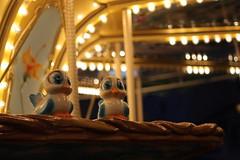 Lil' birdies on the Carousel