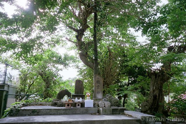 神聖なる場所 / Religious place
