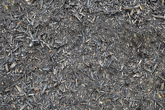 asphalt(0.0), branch(0.0), leaf(0.0), soil(0.0), pattern(1.0), mulch(1.0),