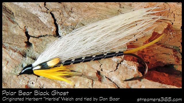 #10-2013 Polar Bear Black Ghost tied by Don Soar