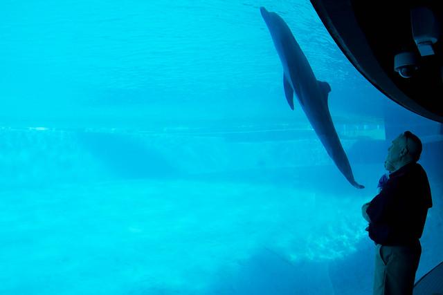 Texas State Aquarium-006.jpg