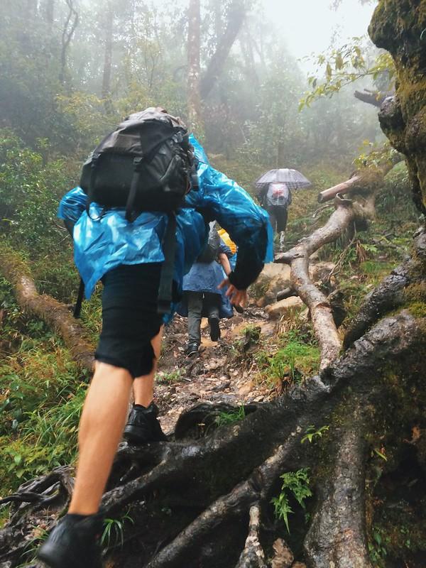 Trekking Sapa November