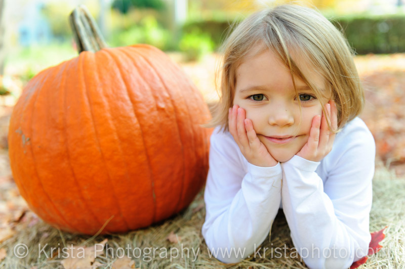 fall mini-portrait sessions