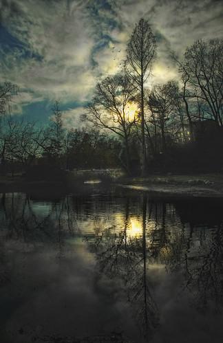 lake birdsinflight goldensky goldenwater connecticuit binneypark