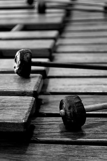 Marimba... maderas que cantan!