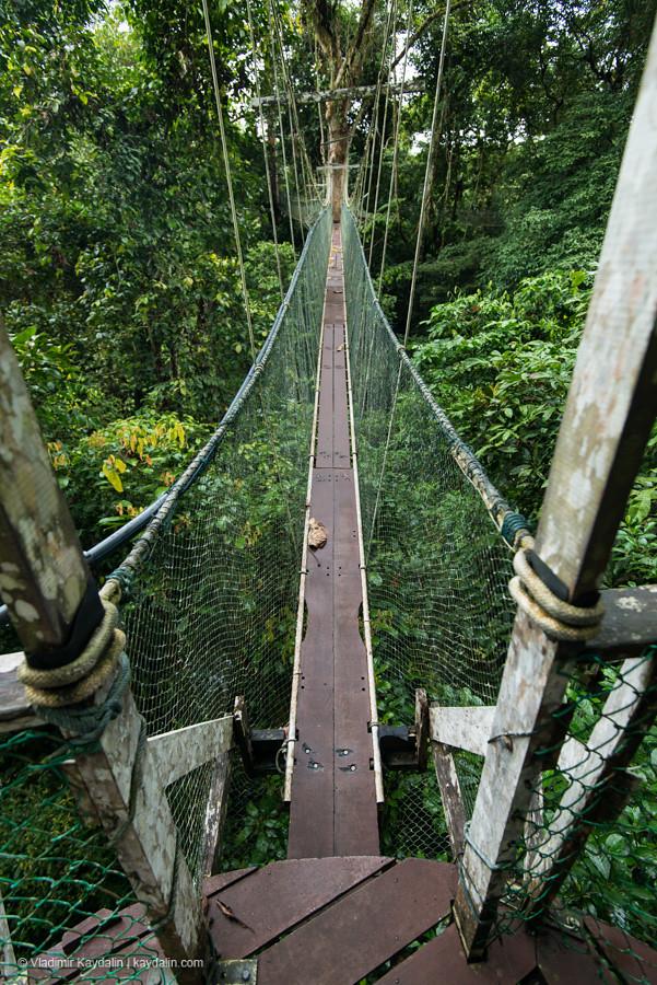 канатная дорога в национальном парке мулу, малайзия