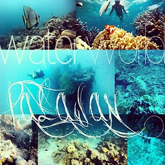 (under)water world Palawan #palawan #philippines #diving #scubadivibg #snorkeling #fish #wreck #nemo #turtle #water #underwater #travel #ocean #sea #lionfish