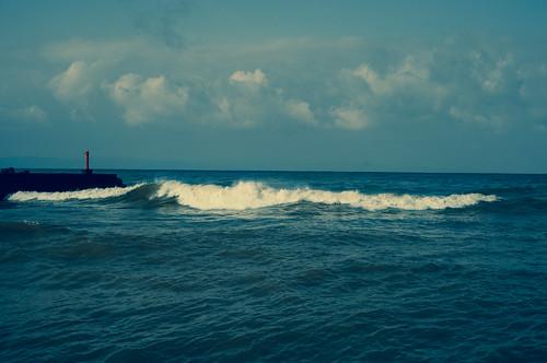 海を見た日