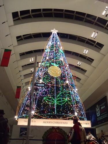 ゆず クリスマスツリー